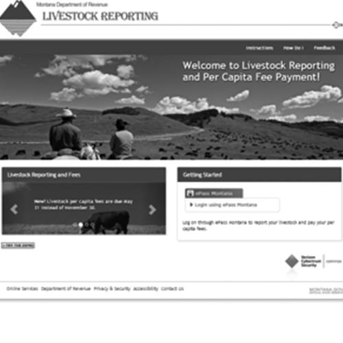 Livestock Reporting